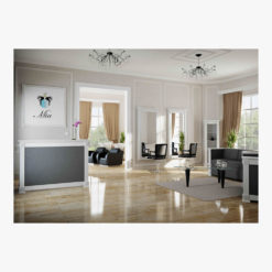 Direct salon furniture insignia package a direct salon for Modern salon furniture packages