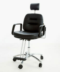 Wbx Comforto Gas Lift Reclining Chair Direct Salon Furniture
